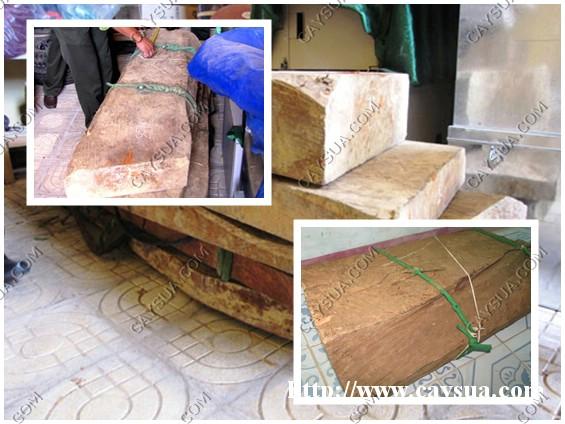 Hình nhỏ bên phải là khối gỗ sưa 50kg có giá trị cao